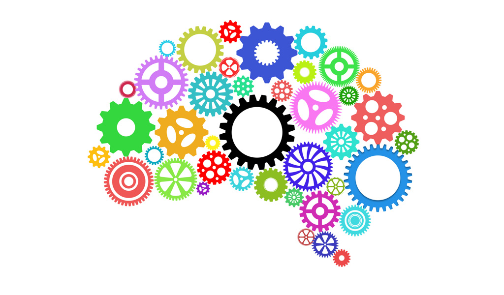school organize get organized for better learning article 9650 brain